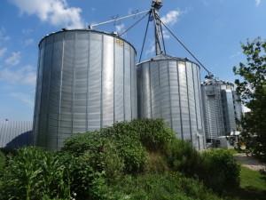 In riesigen Silos wird das Getreide getrocknet und aufbewahrt bis es...