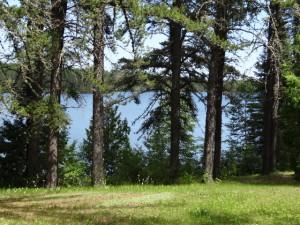 Vorbei an Wäldern und Seen.