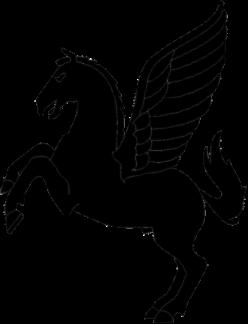 Pegasus 5C