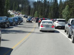 Viele wollten an diesem langen Wochenende nach Lake Louise