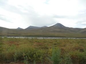 Der Highway führte zuerst durch den Tombstone Territorial Park.