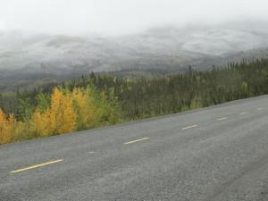 Auf dem Alaska Highway funhren wir Richtung Kanadische Grenze.