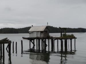 Mi kleinen Ruderbooten fuhren die Fischer hinaus, um die riesigen Lachszüge im Skeena River zu fangen.