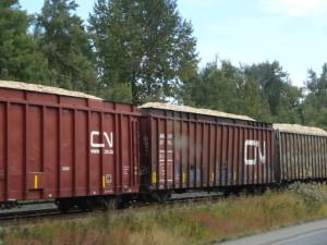Eisenbahnzüge bringen Holz nach Prince George. Prince George ist ein Zentrum für Holzverarbeitung.
