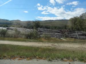 Holzlager entlang der Strasse