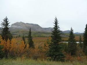 Wir fuhren durch den glacier National Park.