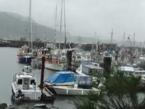 Hafen von Sayward