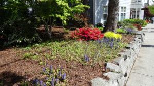 Auch in Seattle ist es Frühling.