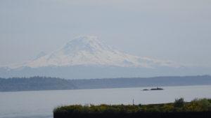 In der Ferne erblickt man den Mount Rainier.