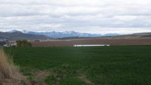 Wir näherten uns Jackson (Wyoming)