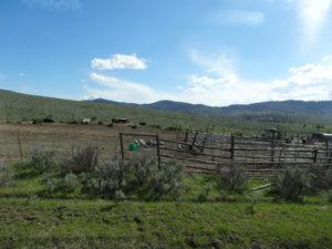 Einsame Farm