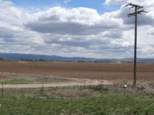 In Idaho werden vorwiegend Kartoffeln an gepflanzt.
