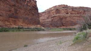 Dem Colorado River entlang ging es Richtung Moab.