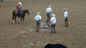 Es gab auch Wettkämpfe zwischen den Mannschaften von verschiedenen Farmen.