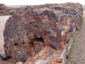 Die Verfärbungen ergaben sich durch unterschiedliche Mineralien im Gestein.