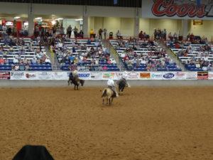 So war das Rodeo in Amarillo ein unerwartete Erlebnis.