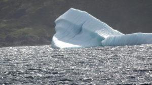 Wir bewundertenbdie Eisberge in der Bucht.